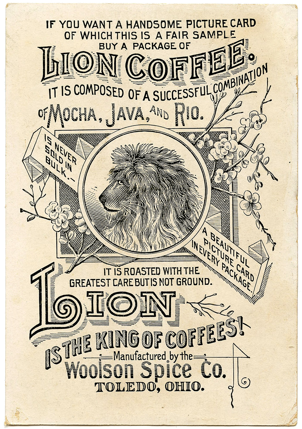 Coffee-Ephemera-GraphicsFairy2